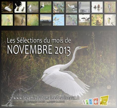 Les Sélections NOV 2013