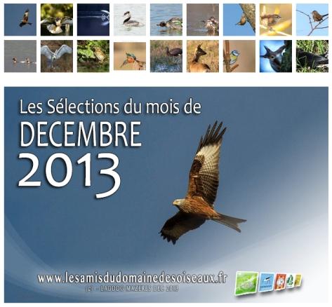 Les Sélections DEC 2013