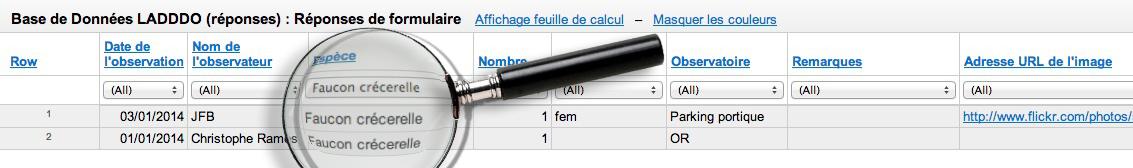 resultat-recherche-liste-faucon