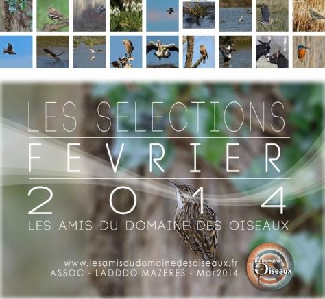 Les Sélections FEV 2014