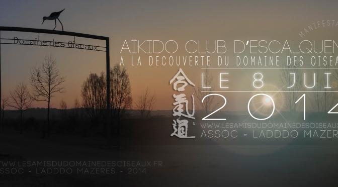 Rencontre avec l'AÏKIDO CLUB D'ESCALQUENS Le 8 JUIN 2014
