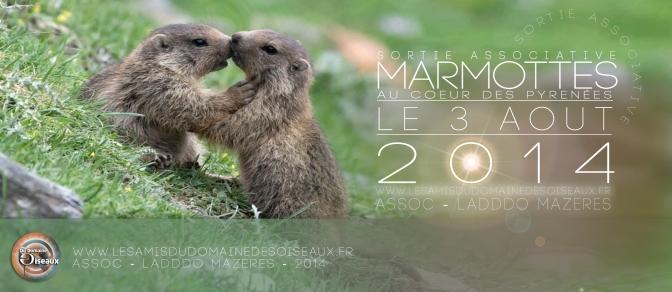 Sortie associative – Les Marmottes – 3 Aout 2014