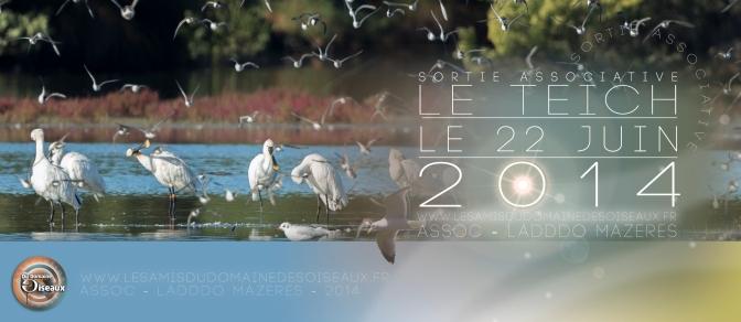 Sortie associative – Le Teich – 22 Juin 2014