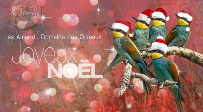 Joyeux Noël – Les Amis du Domaine Des Oiseaux