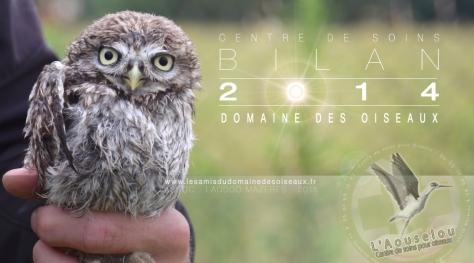 Bandeau-cds-2014-visuelsiteladddo