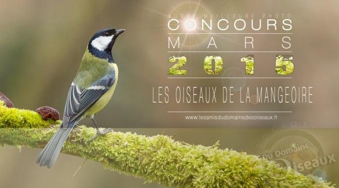 Concours photo – MARS 2015