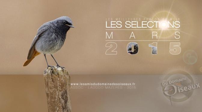 Sélections PHOTOS MARS 2015