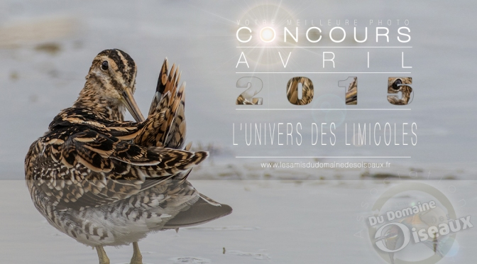 Concours photo – AVRIL 2015