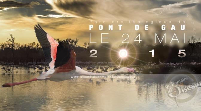 Sortie associative – Pont de Gau 24 mai 2015