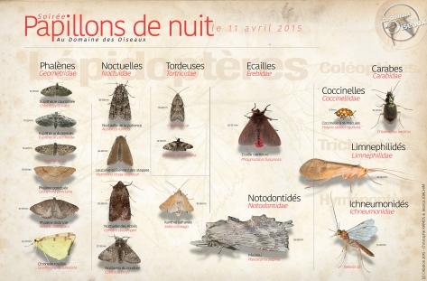 Papillons de nuits - 11 Avr 2015-1920HD