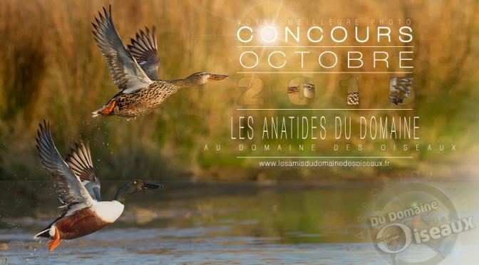 Concours photos – OCTOBRE 2015