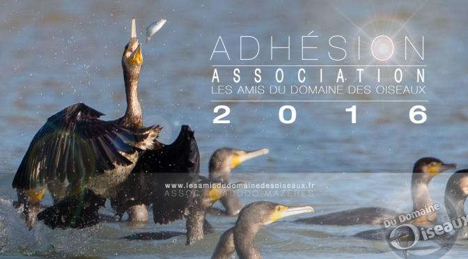 Adhésion à l'association pour l'année 2016
