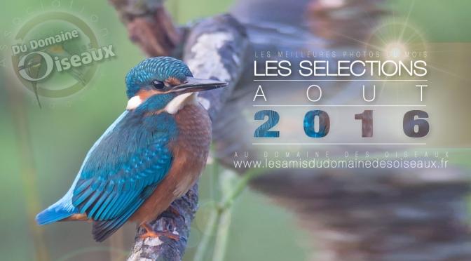 SELECTIONS PHOTO AOUT 2016