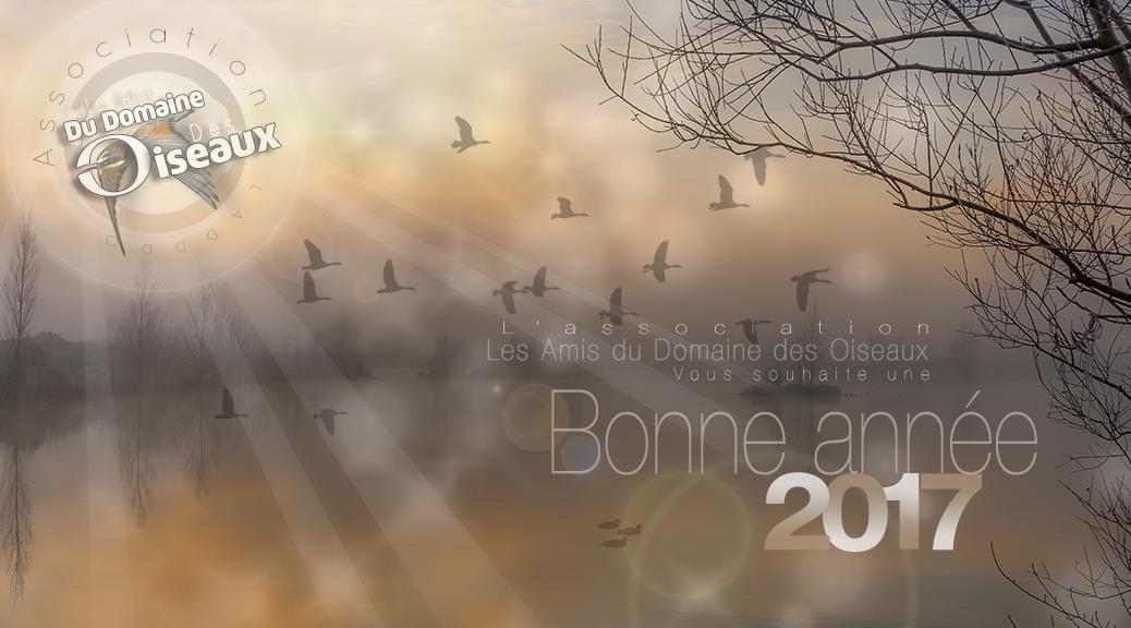 bonne-annee2017-web