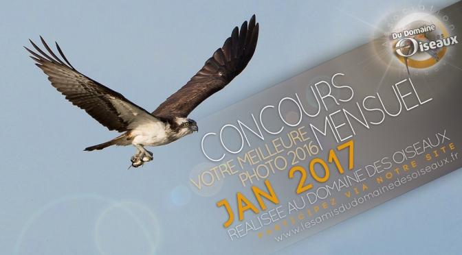 CONCOURS PHOTO JANVIER 2017