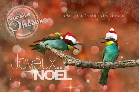 joyeux-noel-2016-carte