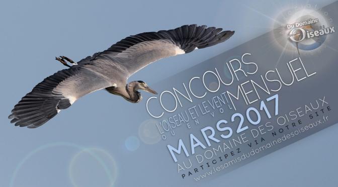 Concours photo MARS 2017