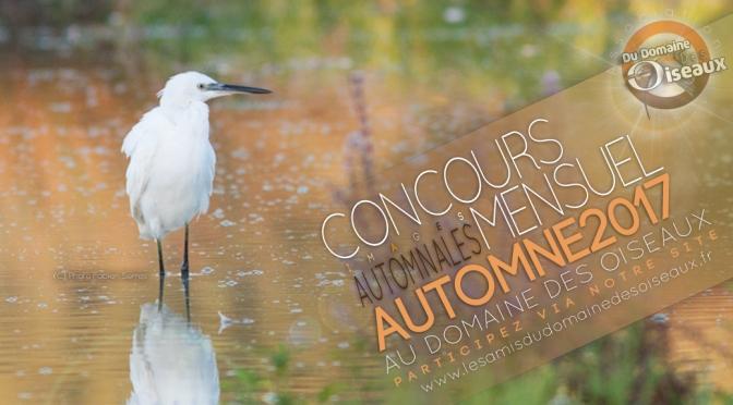Concours photo 'Automne 2017'