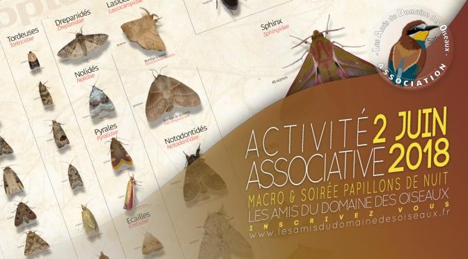 Activité associative Macro & Soirée Papillons de nuit 2 juin 2018