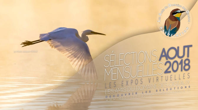 LES SELECTION PHOTOS AOUT 2018