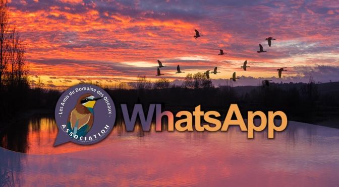WhatApp – Groupes de partage d'observations.