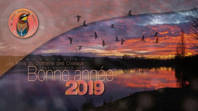 BONNE ANNEE 2019 !