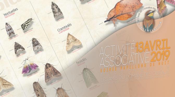 Activité associative Soirée Papillons de nuit 13 avril 2019