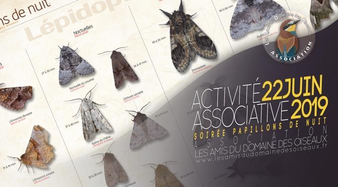 Activité associative Soirée Papillons de nuit 22 juin 2019