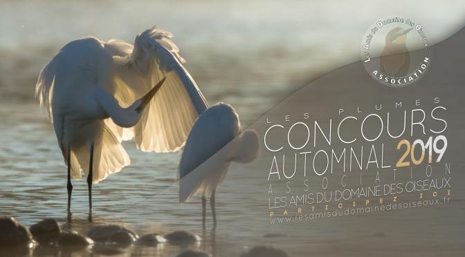 Concours Automne 2019
