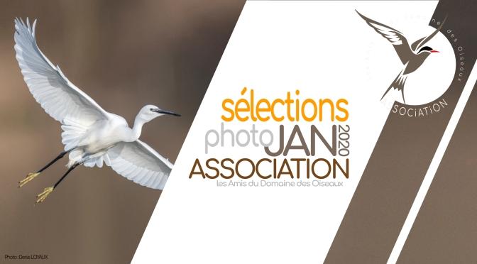 SÉLECTIONS PHOTO JANVIER 2020