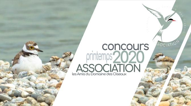 Concours printemps 2020