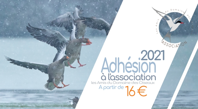 ADHÉSION À L'ASSOCIATION POUR L'ANNÉE 2021