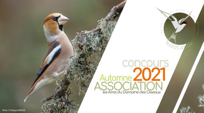 Concours Automne 2021